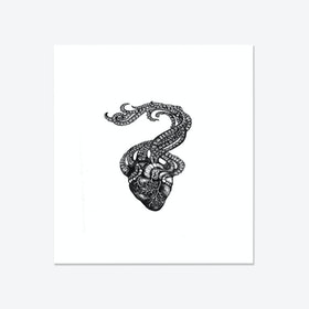 Organoctapus Fine Art Print