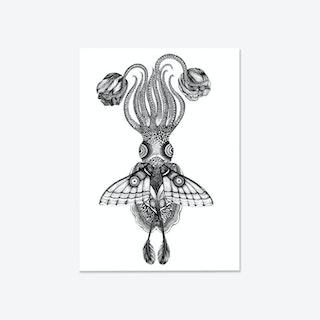 Tethidadoptera Fine Art Print