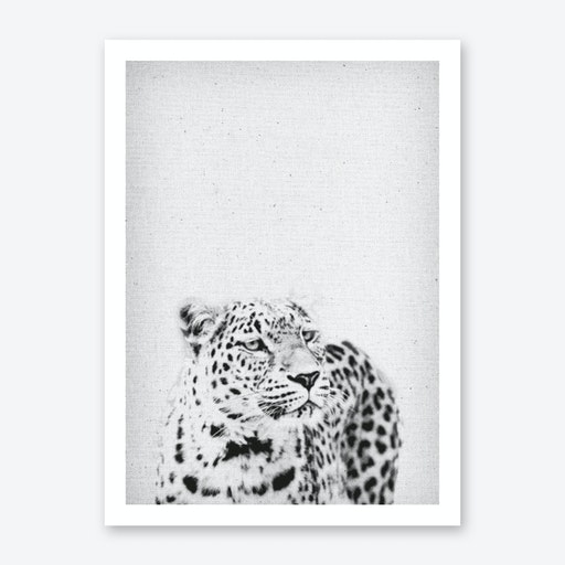Leopard III Art Print