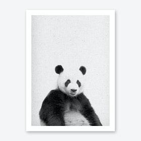 Frolein Panda IV Art Print