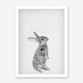 Frolein Rabbit I Art Print
