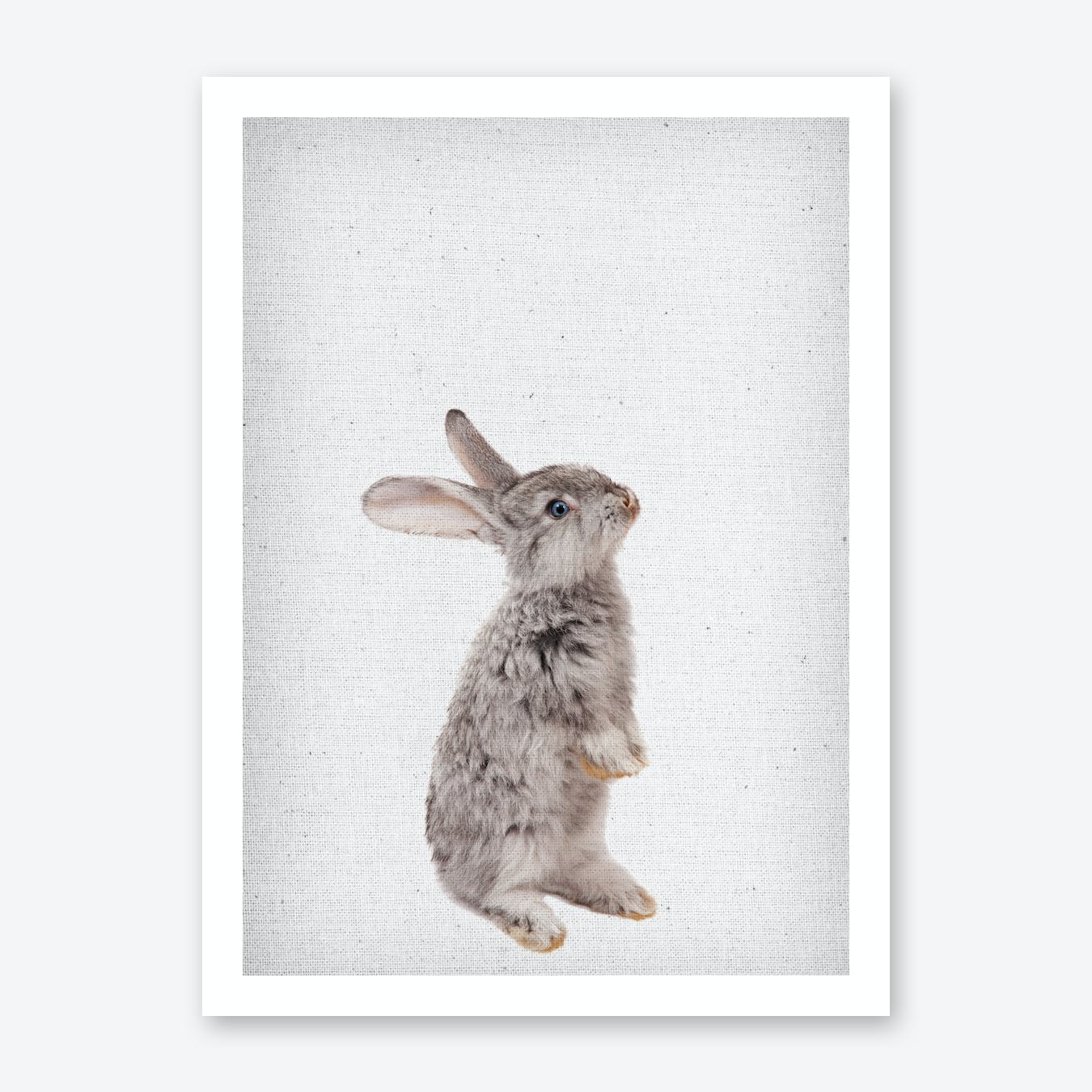 Frolein Rabbit II Art Print