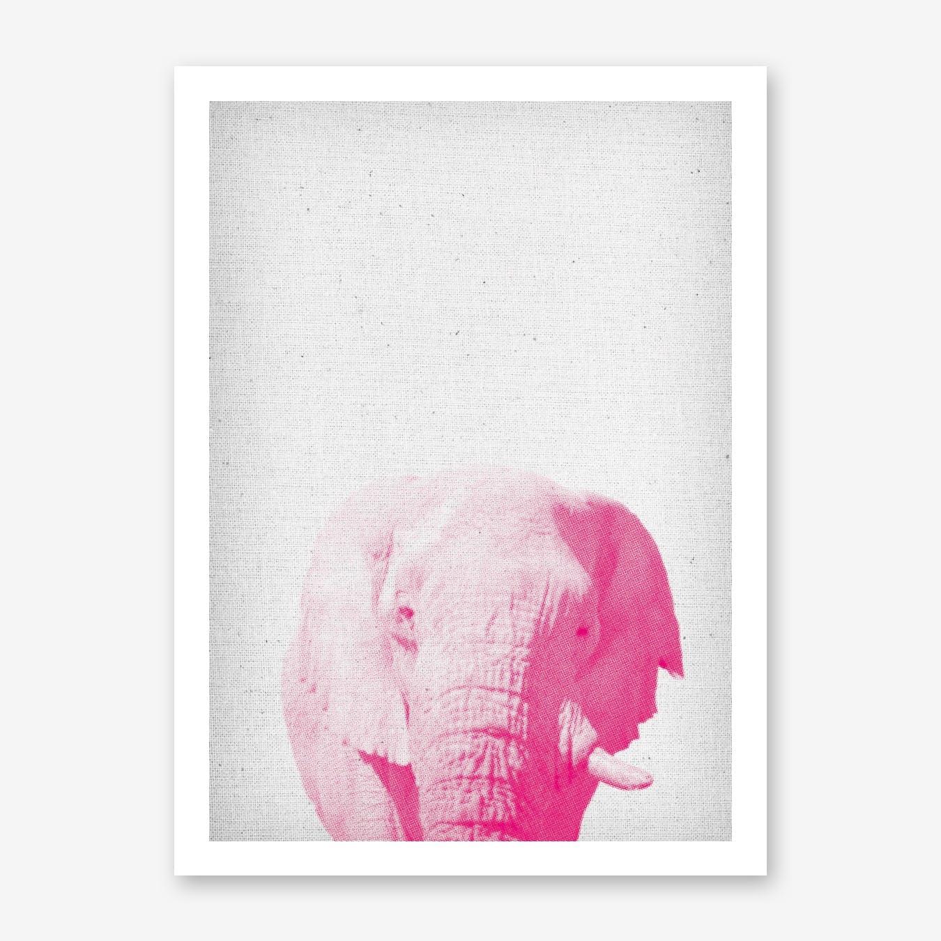Elephant II Print