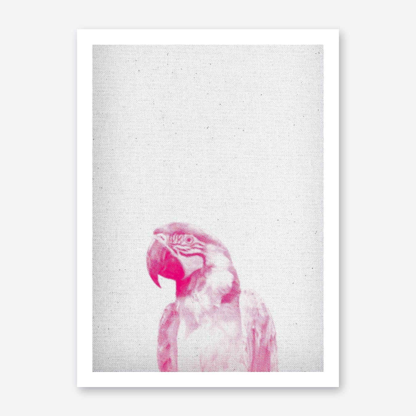 Papagei II Art Print