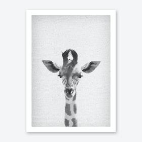 Giraffe II Art Print