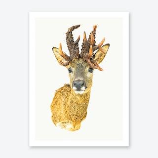 Animal I Art Print