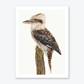 Birds VIII Art Print
