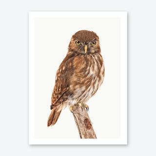 Birds X Art Print