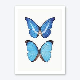 Butterflies V Art Print