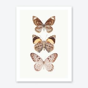 Butterflies VI Art Print