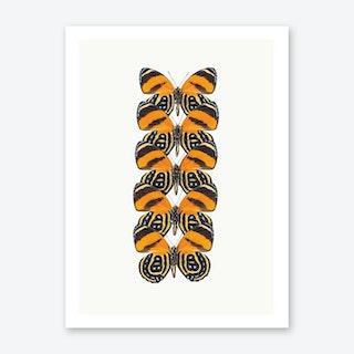 Butterflies VII Art Print