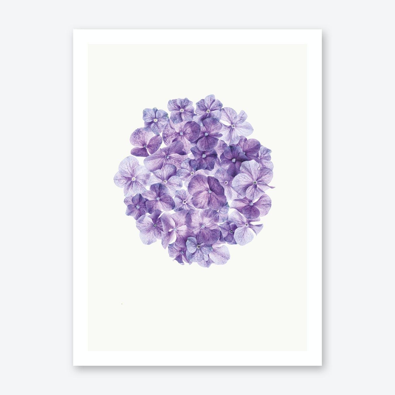 Flower I Print