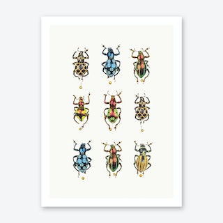 Insects V Art Print