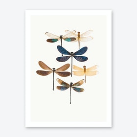Insects X Art Print