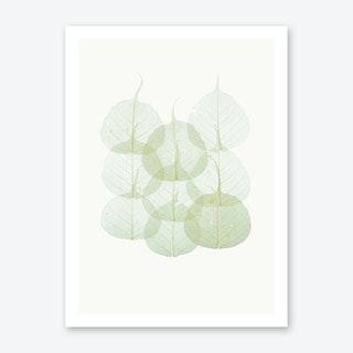 Leaves II Art Print