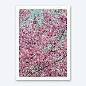 Pink Blossom Tree Art Print