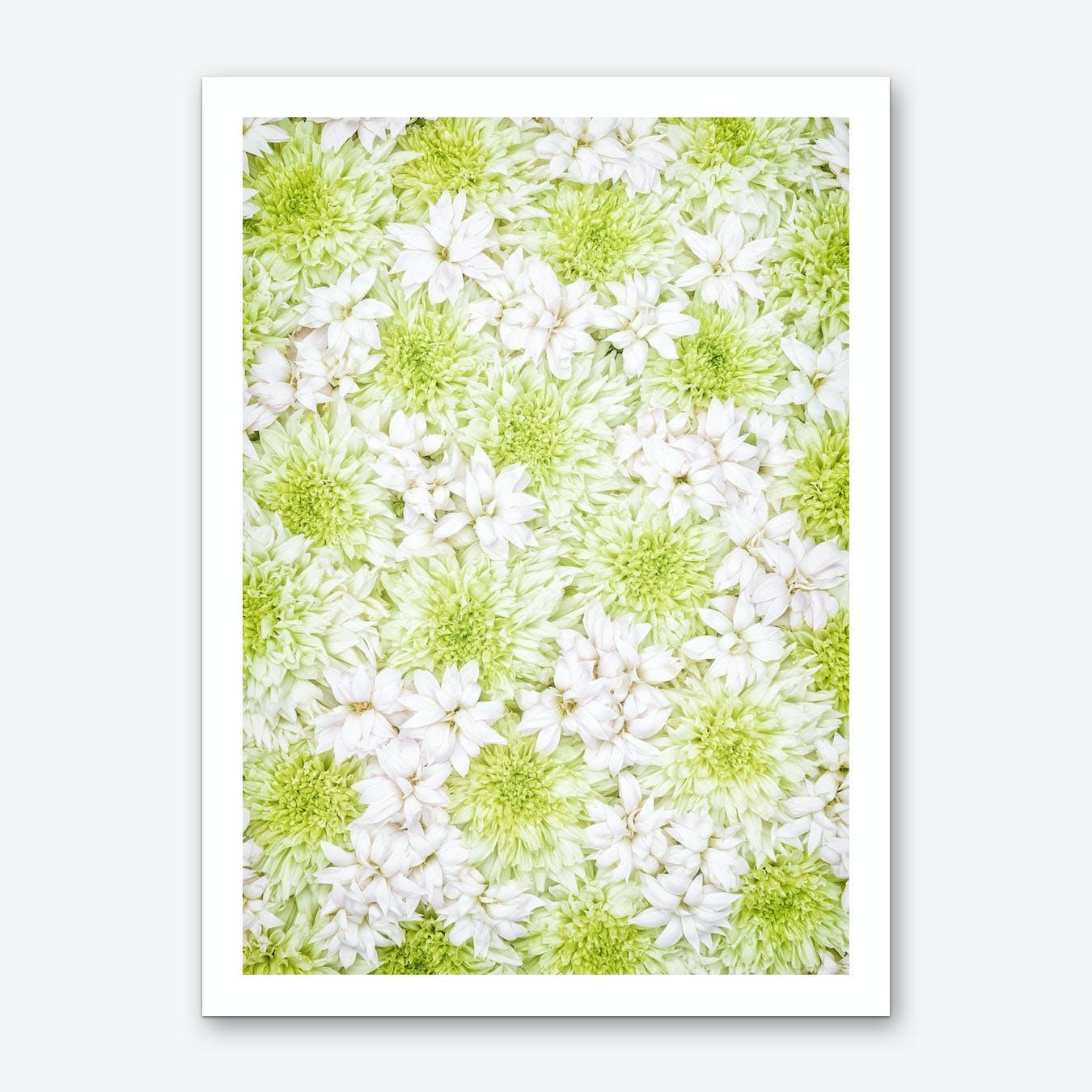 White Green Flowers Art Print