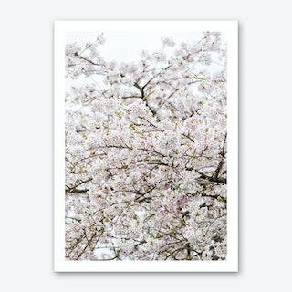 Blossom Tree Art Print