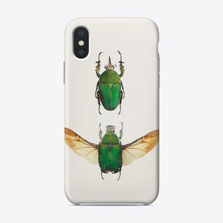 Insects02
