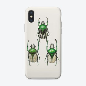 Insects04