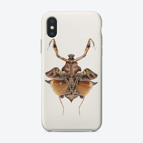 Insects05