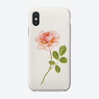 Roses01
