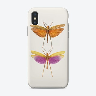 Insects 10