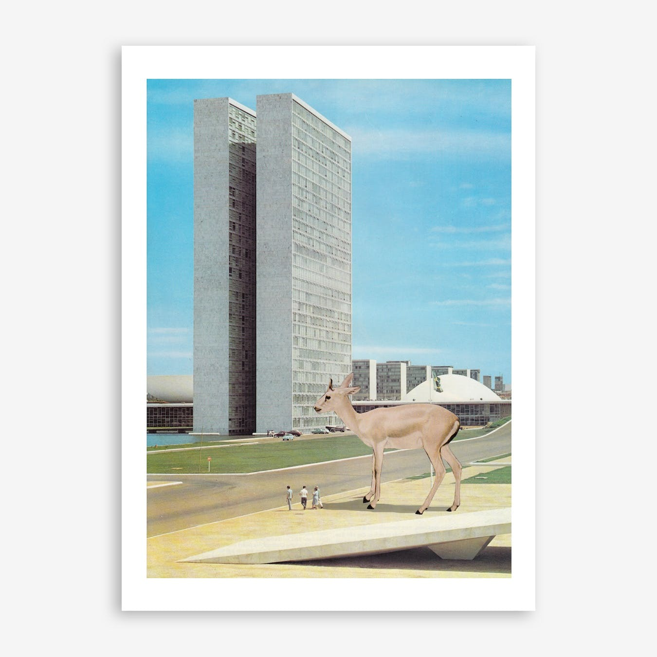 Tame Impala Print