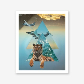 Tigers And Planes Art Print