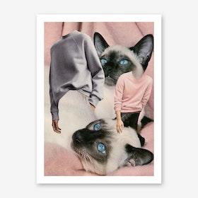 Cat Sweaters Print