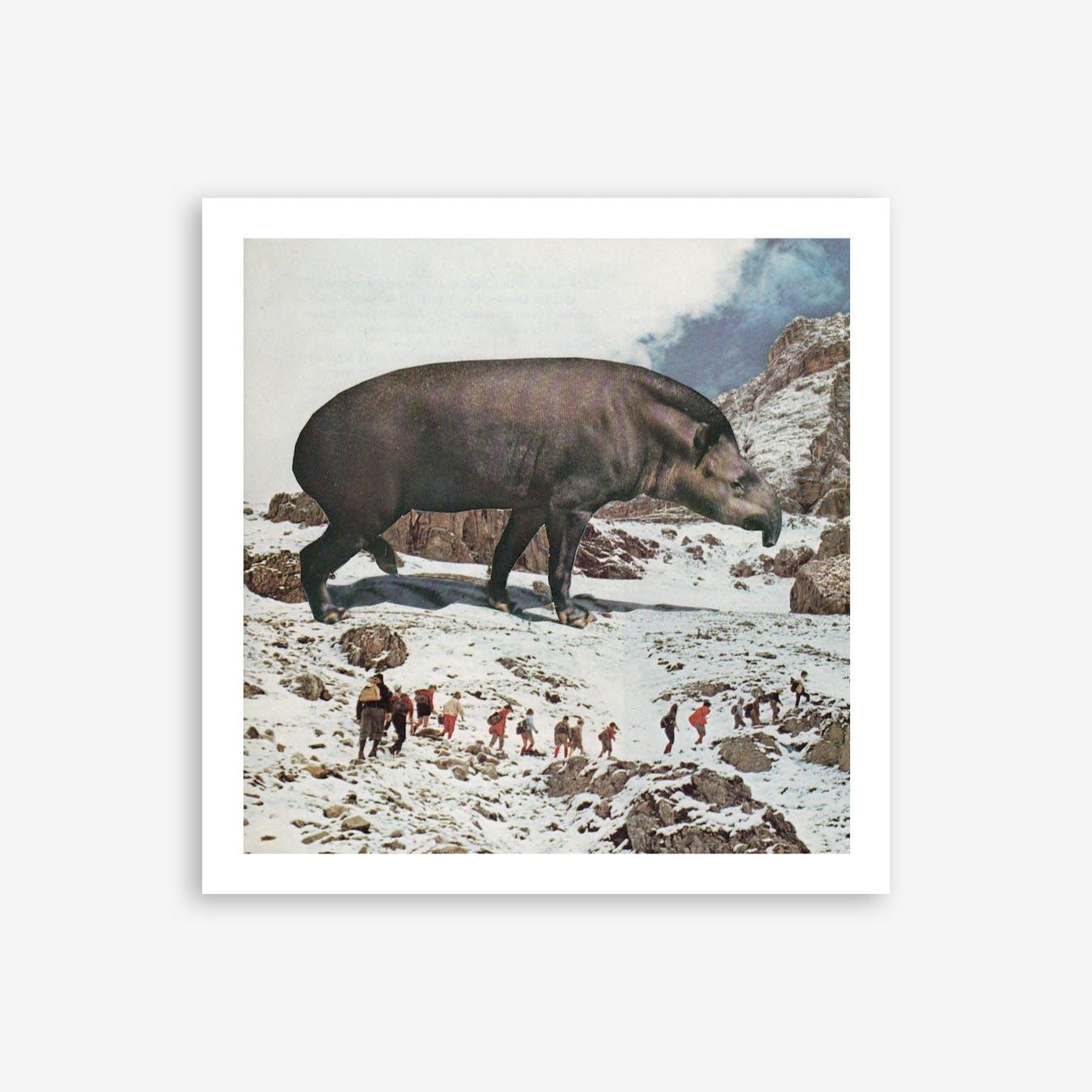Giant Tapir Print