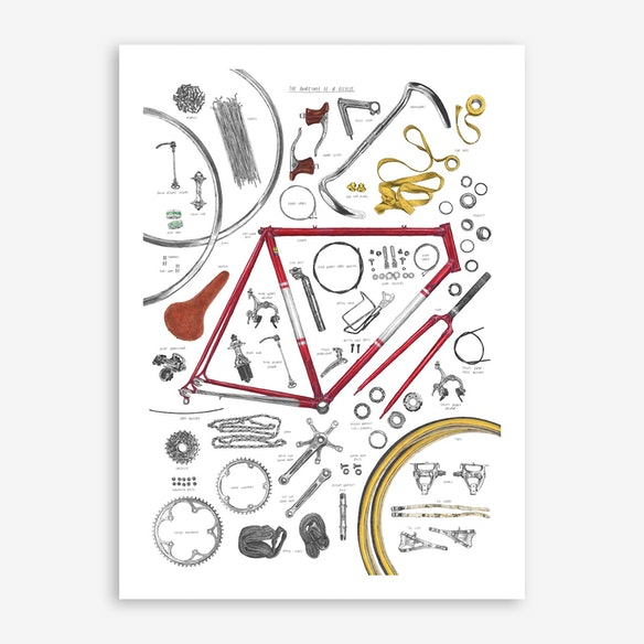 Anatomy Of A Bicycle Print Free Shipping Fy