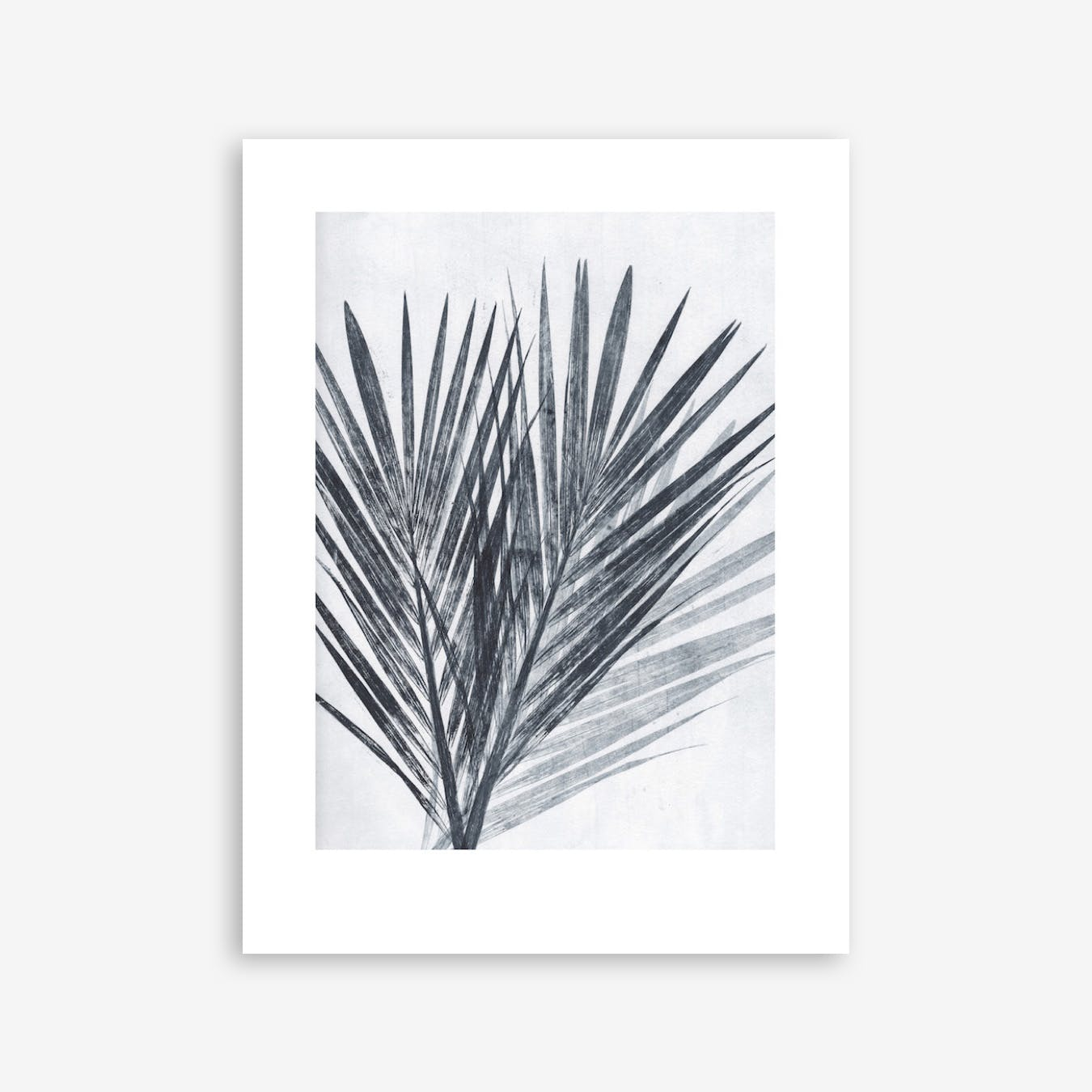 Palm Light Print In 30cm x 40cm