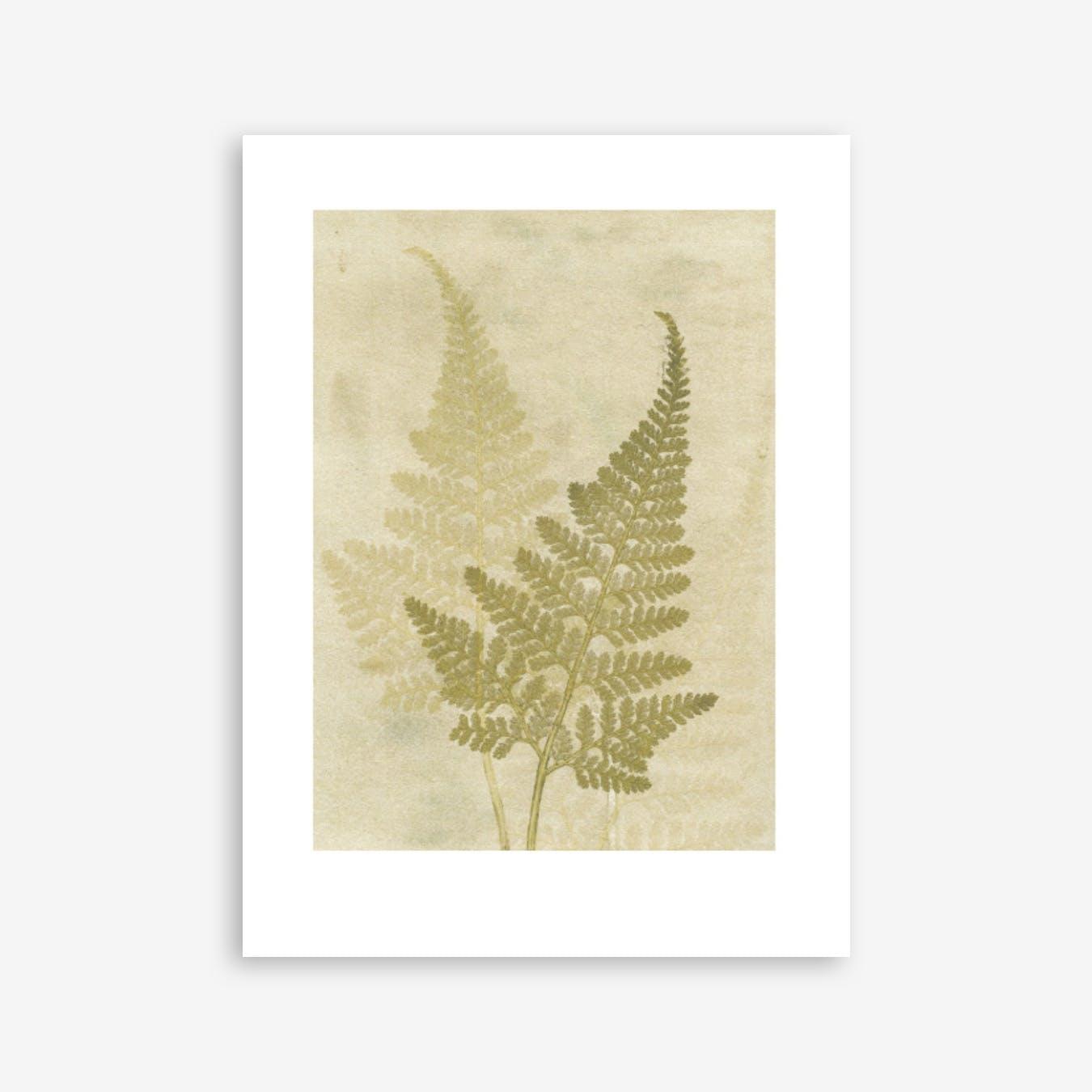 Fern Olive Print In 30cm x 40cm