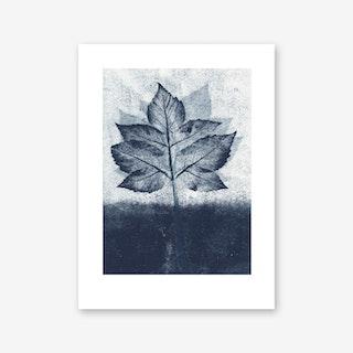 Goutweed 2 Ink Art Print In 30cm x 40cm