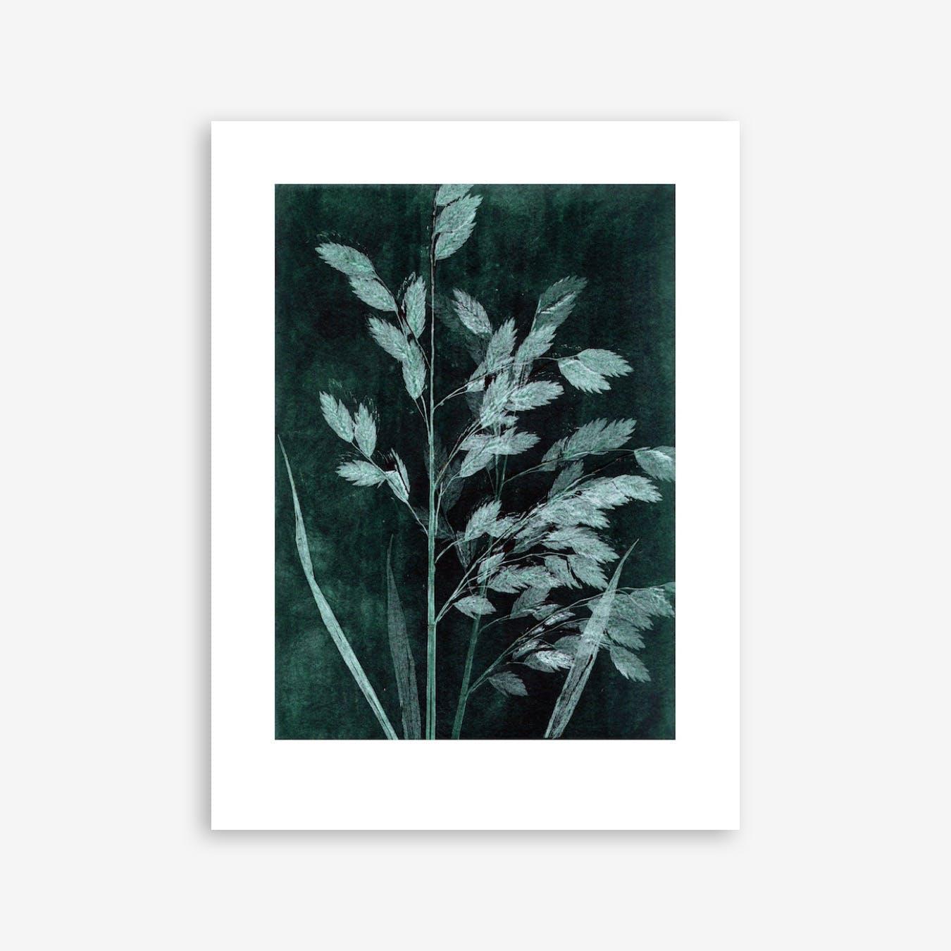 Grass Petrol Print In 30cm x 40cm