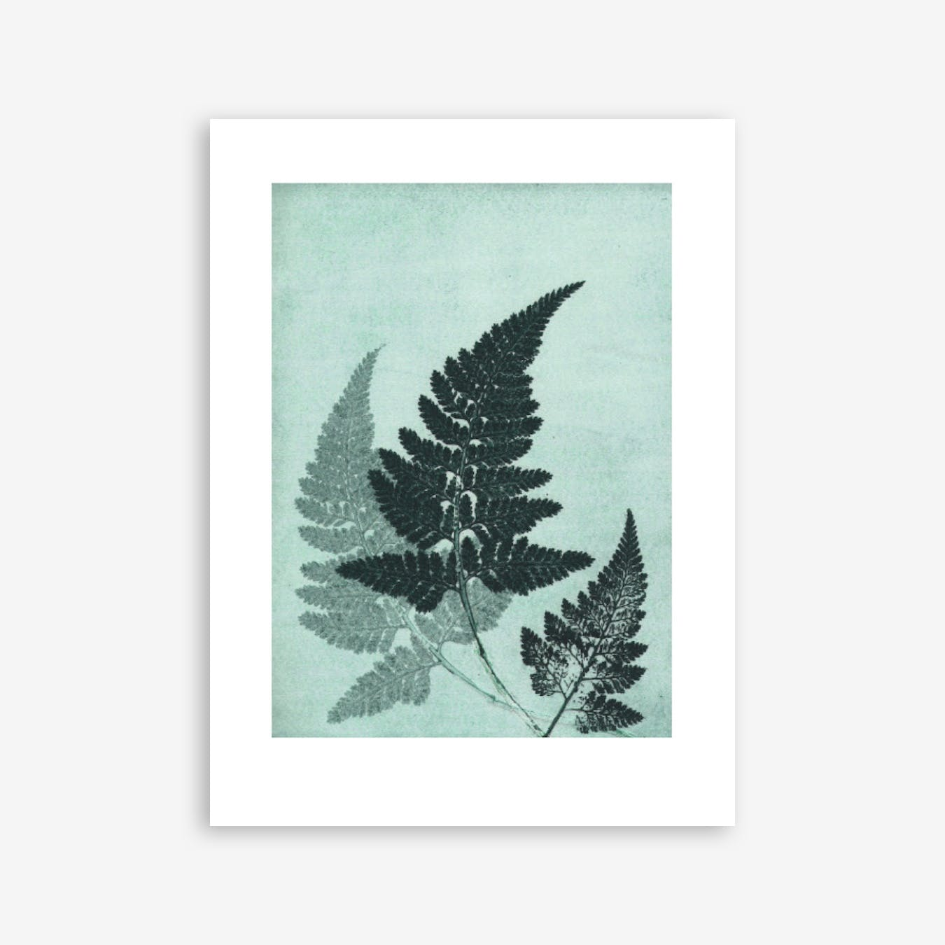Fern River Green Print In 30cm x 40cm
