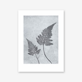 Fern Dusty Blue Art Print In 30cm x 40cm