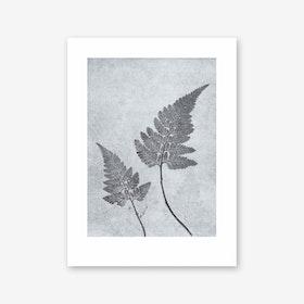 Fern Dusty Blue Print In 30cm x 40cm
