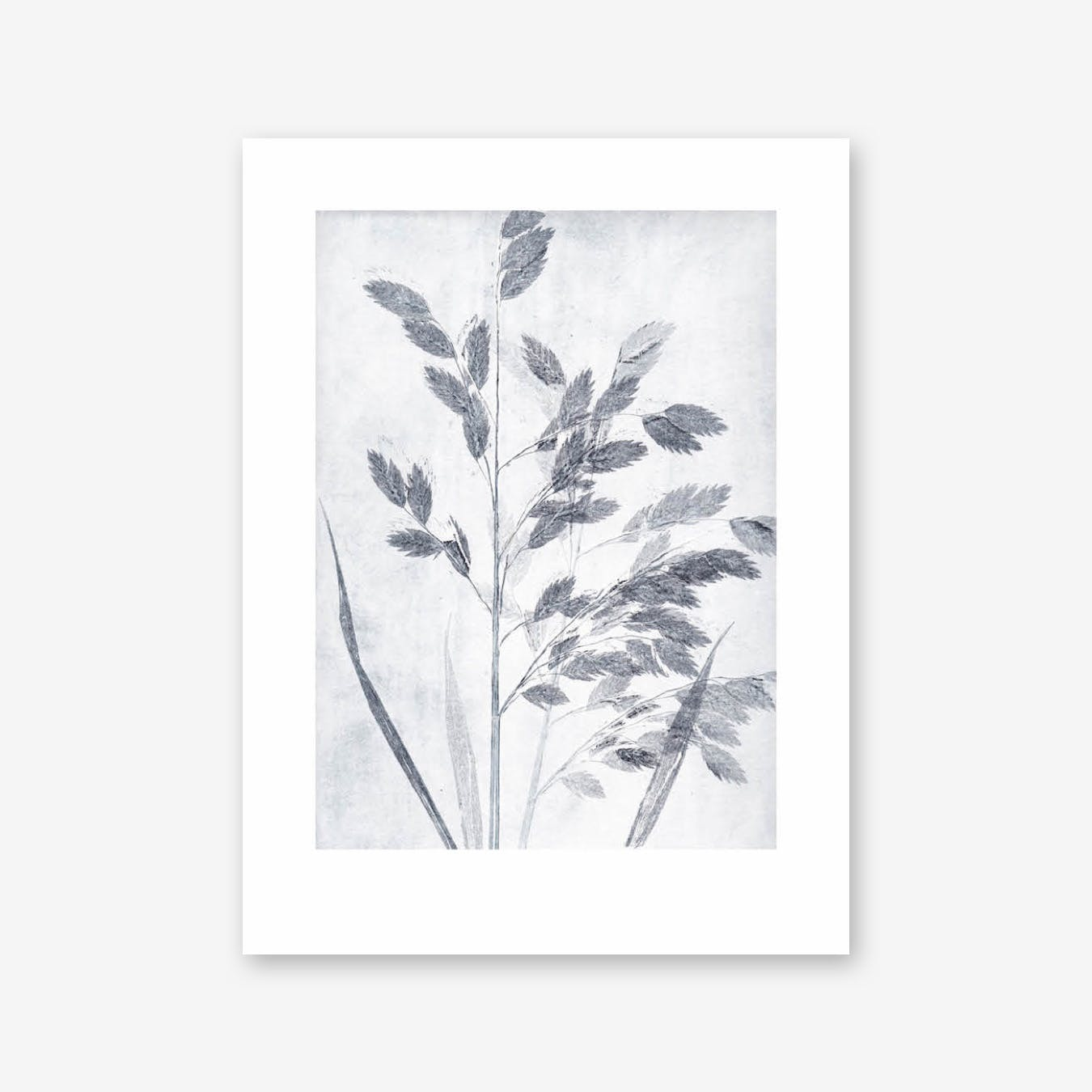 Grass Dusty Blue Print In 30cm x 40cm