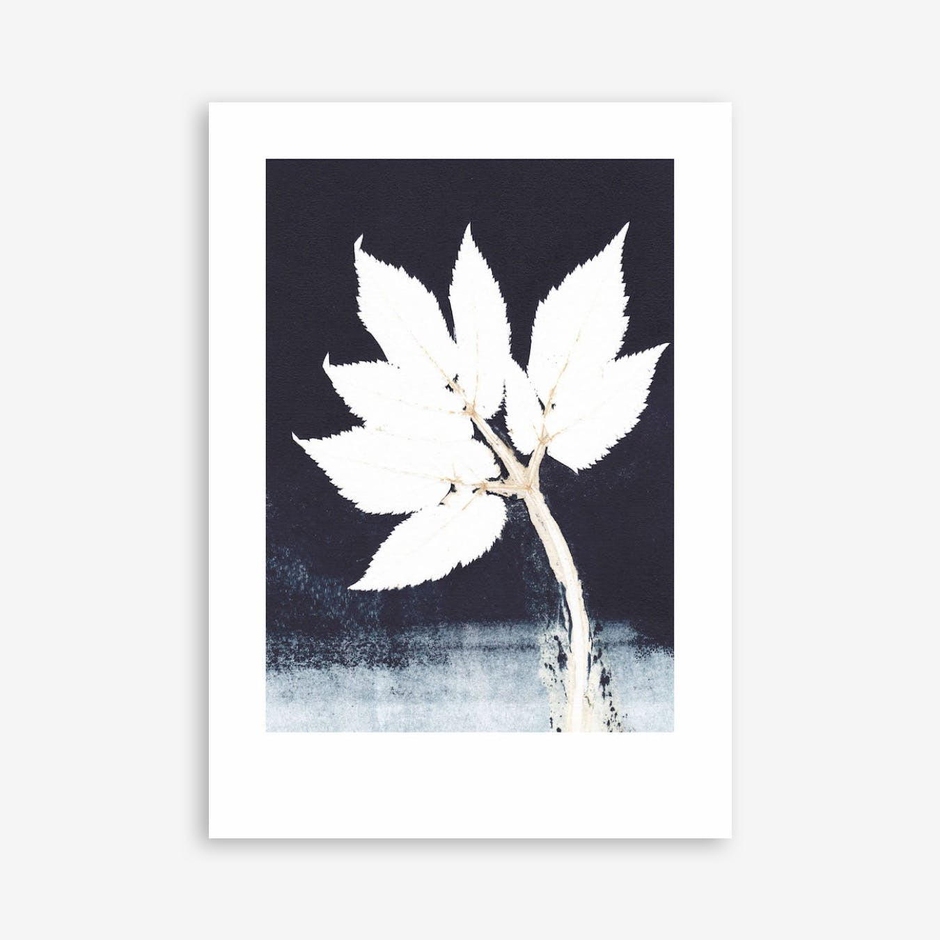 Goutweed Print  In 50cm x 70cm