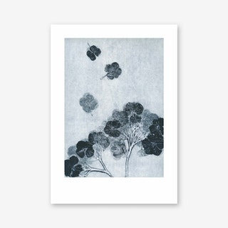 Hortensia Ink Art Print In 50cm x 70cm