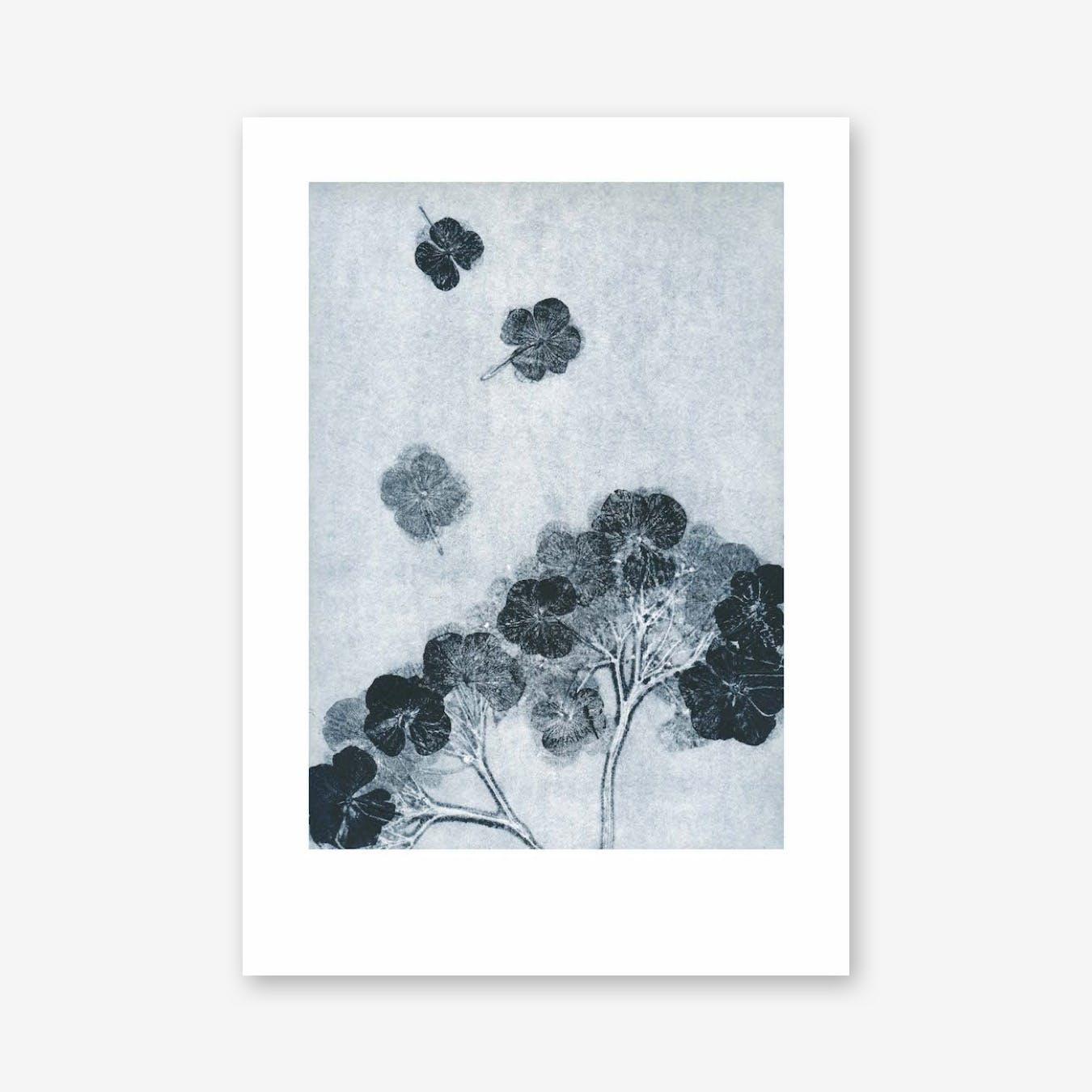 Hortensia Ink Print In 50cm x 70cm