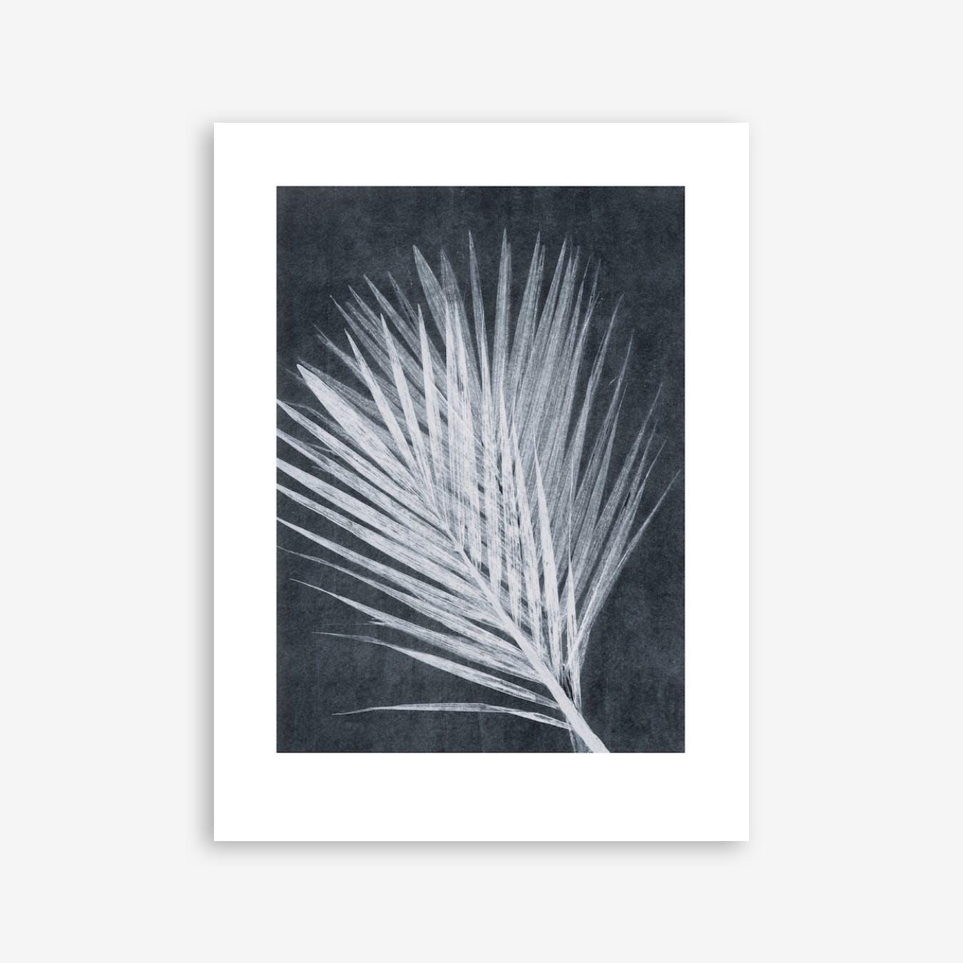 Palm Dark Print