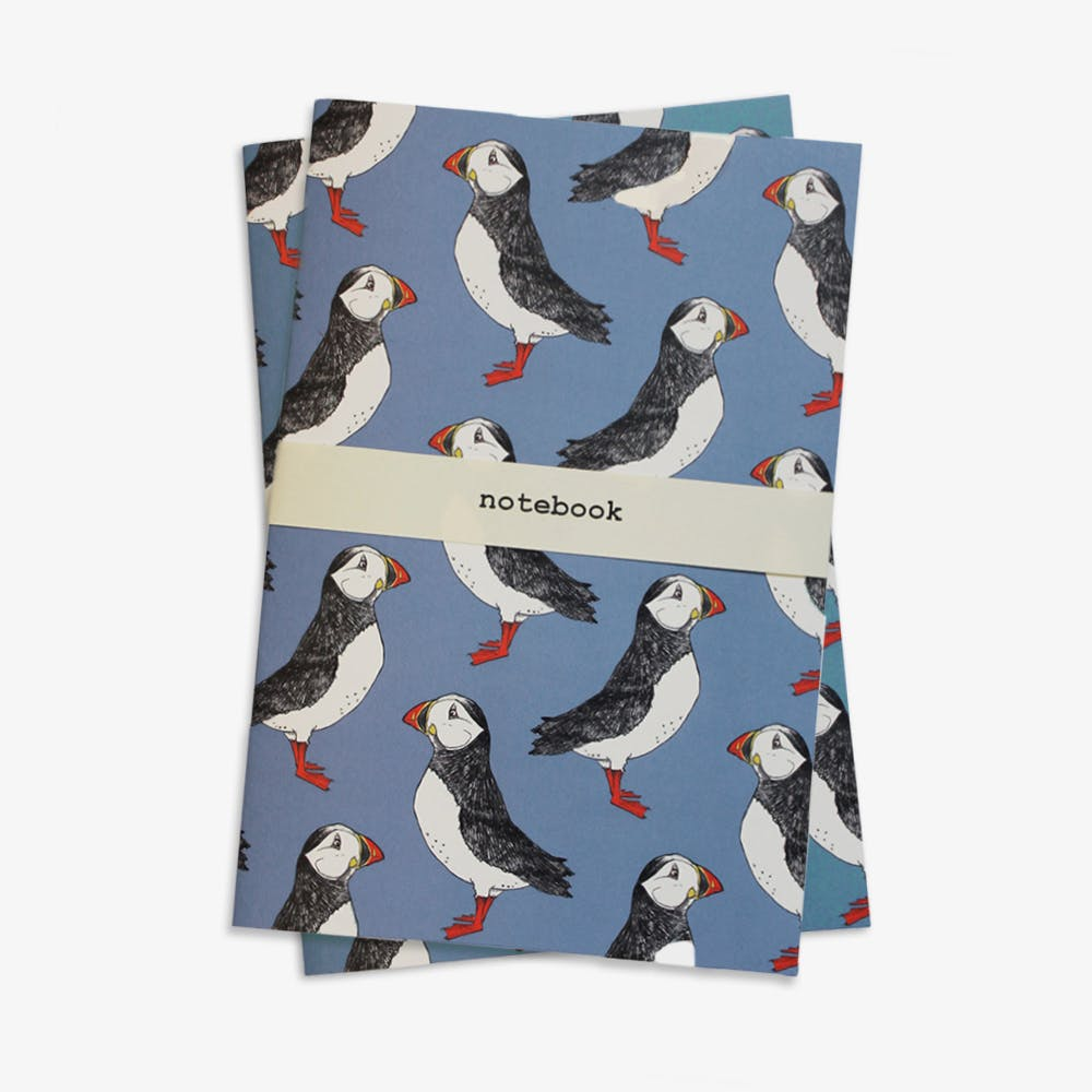 Puffin Billy Notebook in Blue A5 (Set of 2)