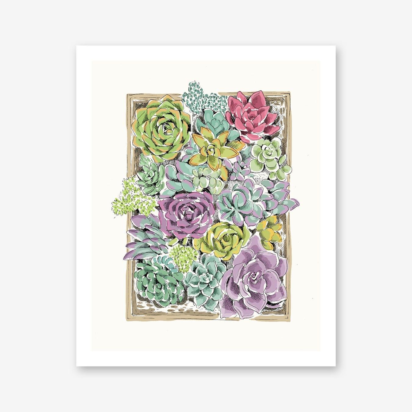 Succulent Tray Art Print