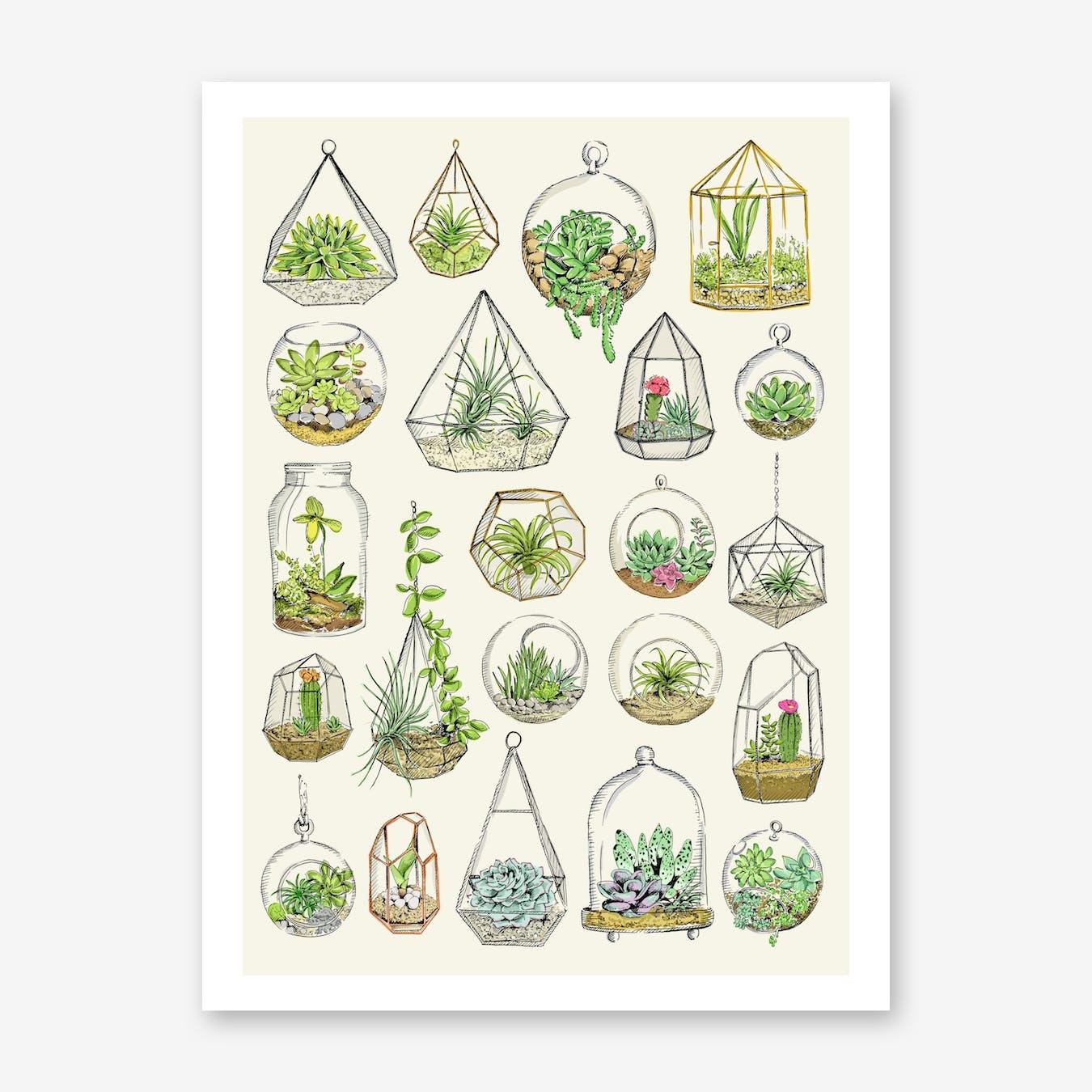 Terraniums Art Print