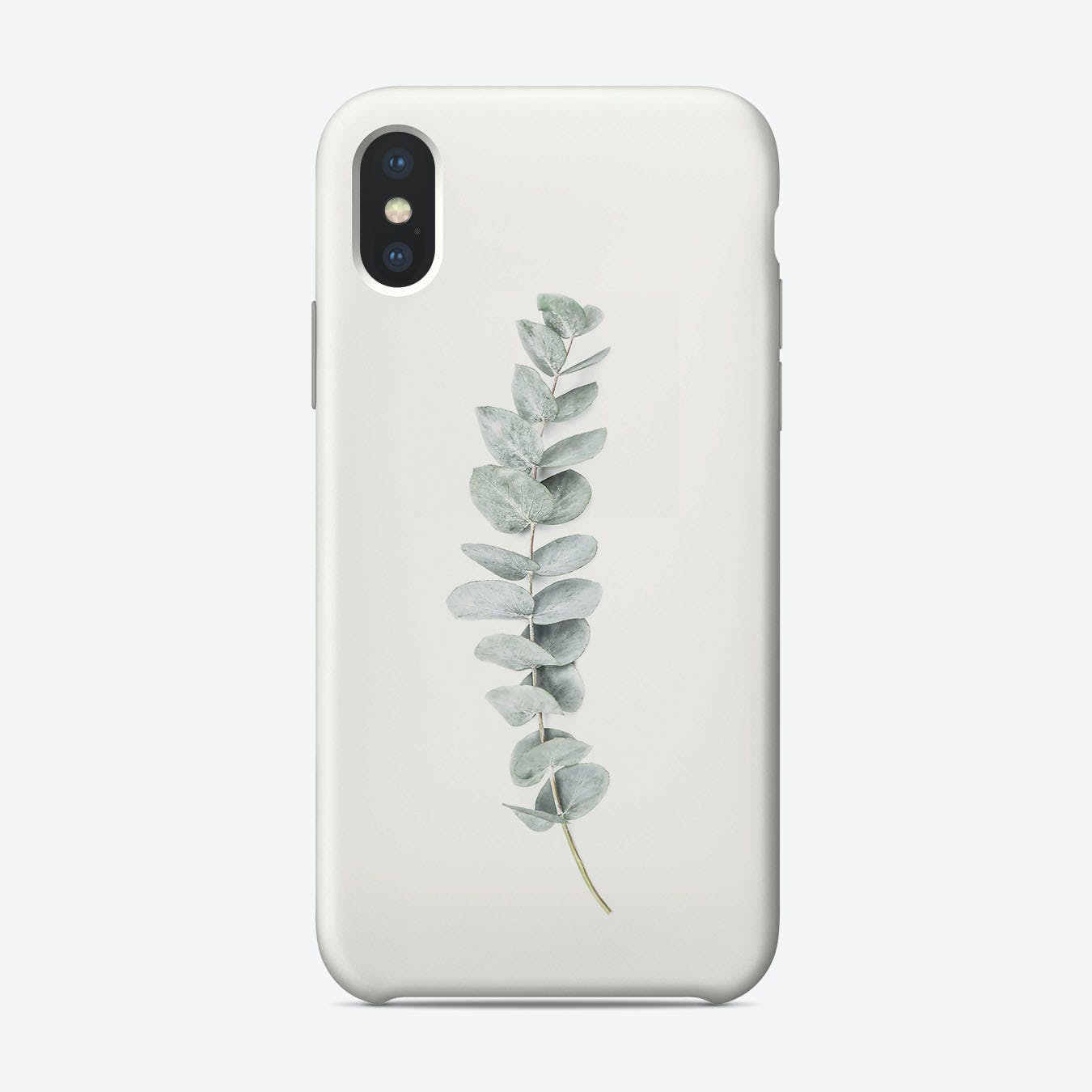 Eucalyptus 1 iPhone Case