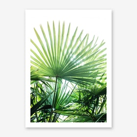 Jungle II Art Print