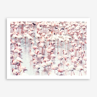 Flock of Flamingos Art Print